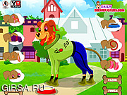 Флеш игра онлайн Наряд для милой собачки / Sweet Dog Dayout
