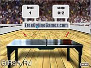 Флеш игра онлайн Настольный тенис / Table Tennis