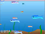 Флеш игра онлайн Fishy