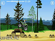 Флеш игра онлайн Stunt Dirt Bike
