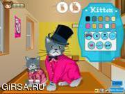 Флеш игра онлайн Два милых котенка
