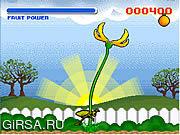 Флеш игра онлайн Ловушка плодоовощ Венера / Venus Fruit Trap