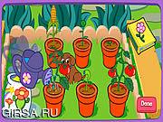 Флеш игра онлайн Волшебный сад Доры