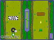 Флеш игра онлайн Гонка лягушки / Frog Race