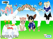 Флеш игра онлайн Pet Wedding Dress up