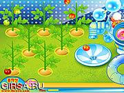 Флеш игра онлайн Предъявите иск томатной фабрике