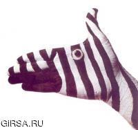 mimikria300